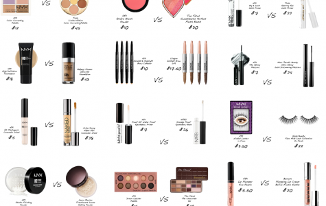 Makeup Shopping on a Budget: The Do's and Don'ts of Makeup, Volume 1