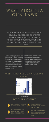 West Virginia Gun Laws