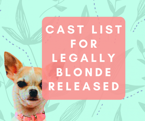 Legally Blonde Cast List Released